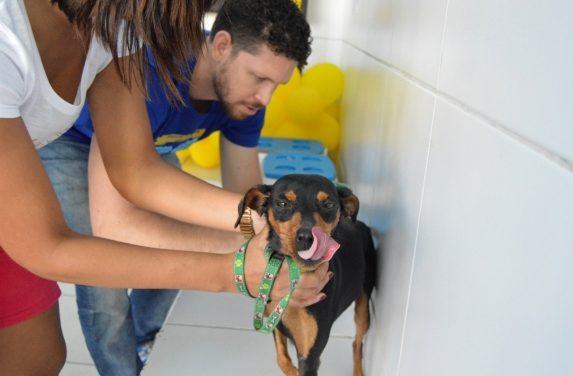 Povoados da Estrada do Arroz recebem campanha de vacinação de cães e gatos