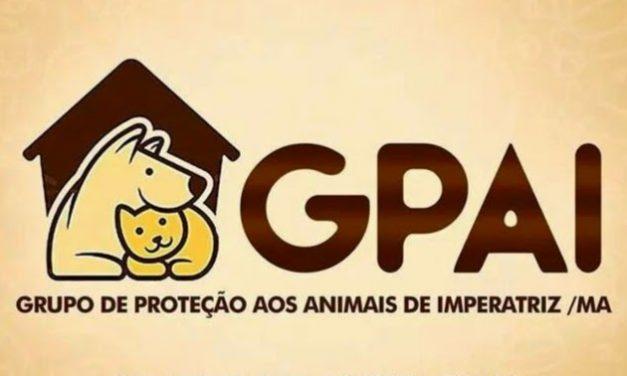 GPAI  realiza Campanha do outubro Rosa para Castração de gatas e cadelas.