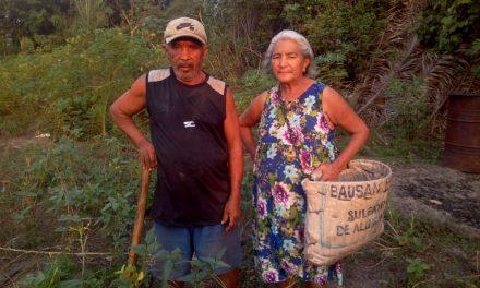 Trabalhadores rurais de Imperatriz temem por seus direitos