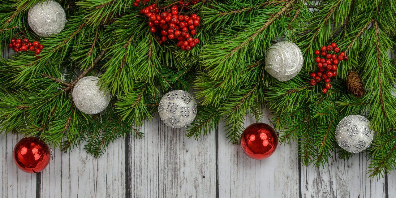 Nesse clima natalino, que tal fazer uma boa ação?