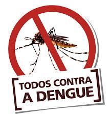 Boletim epidemiológico confirma o aumento de 264% no casos de dengue em 2019, no Brasil