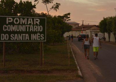 Pessoas fazendo caminhada em torno do Pomar